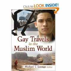 Gay Travels in the Muslim World book