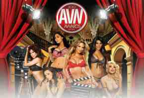 avn-awards 2010 logo