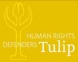 Human Rights Defenders Tulip