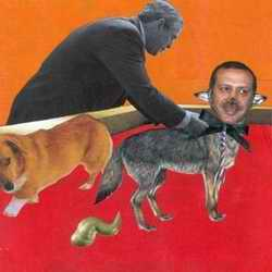 Collage with Turkey PM as dog