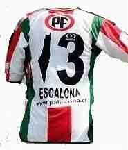 palestino football shirt