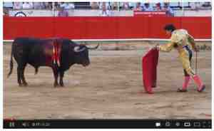 bullfighting video
